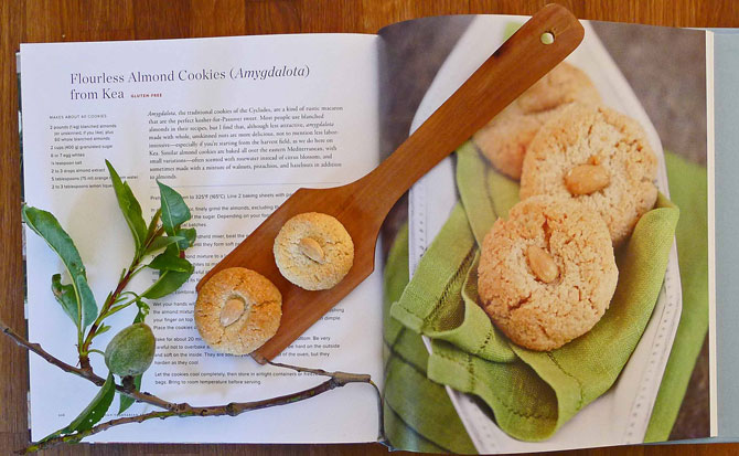almond-cookies-book-s