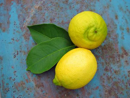 lemons-&-leaves-Table