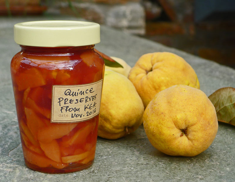 quince-preserves-sw