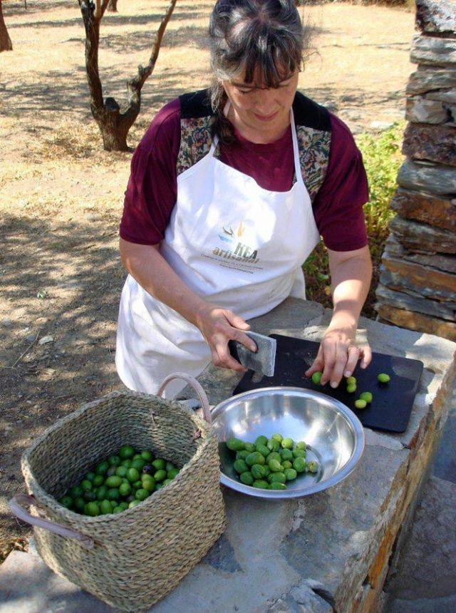Garden Olives cracking to pickle