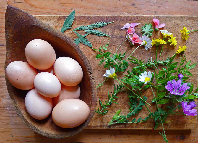 1b-eggs-flowers-leaves-small-flipped