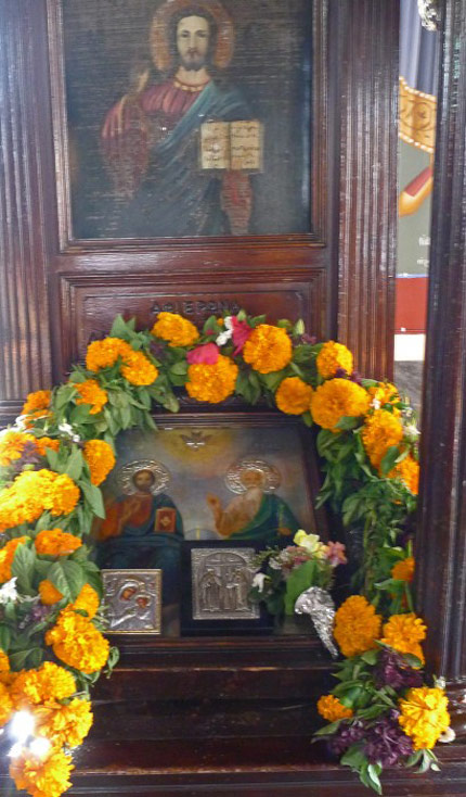 2-Basil--Marigolds-on-Icons