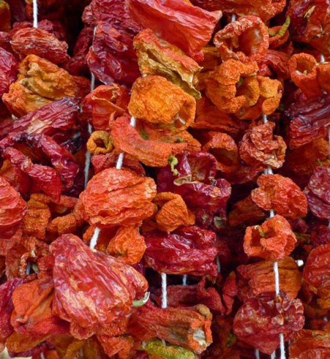 Dried sweet peppers ready to be stuffed hang at the market.