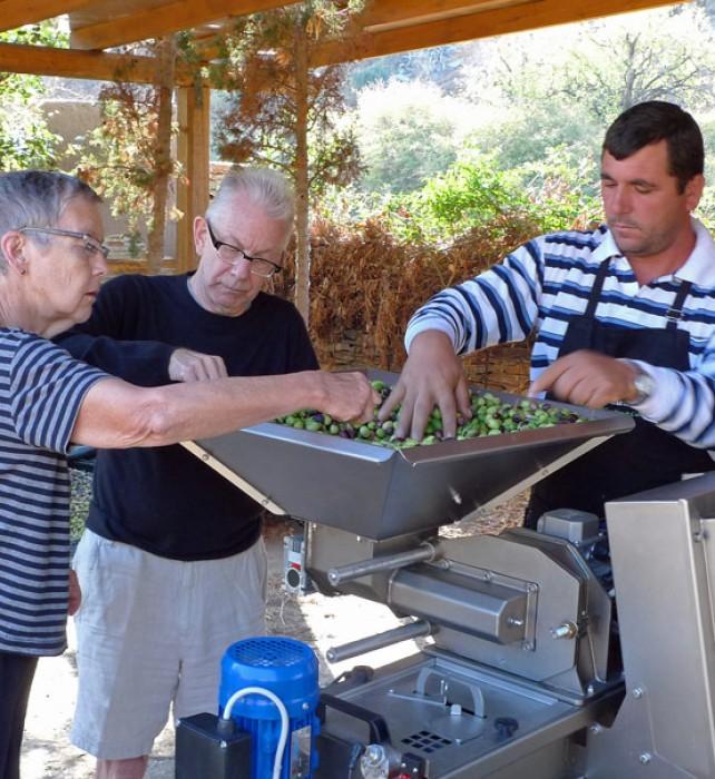 5-olive-pressing-sarah-ed-stathi