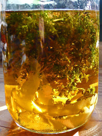 6-thyme-lemon-liqueur-jar-small_0
