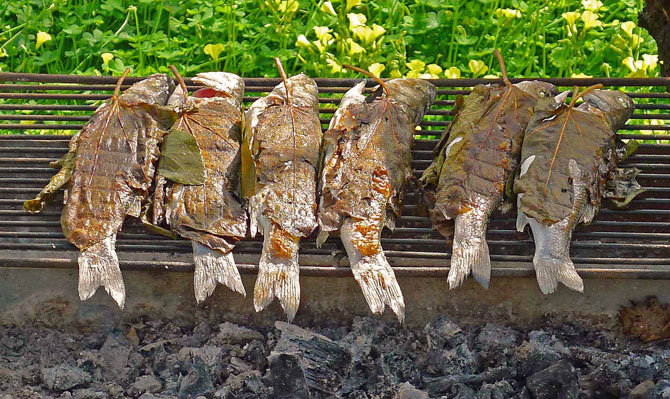 6_fish_leaves_on_grill1_small