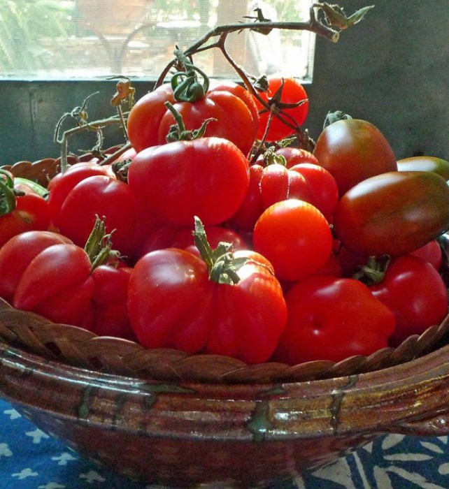 We never refrigerate our tomatoes, leaving them in a bowl or basket that brightens our table!