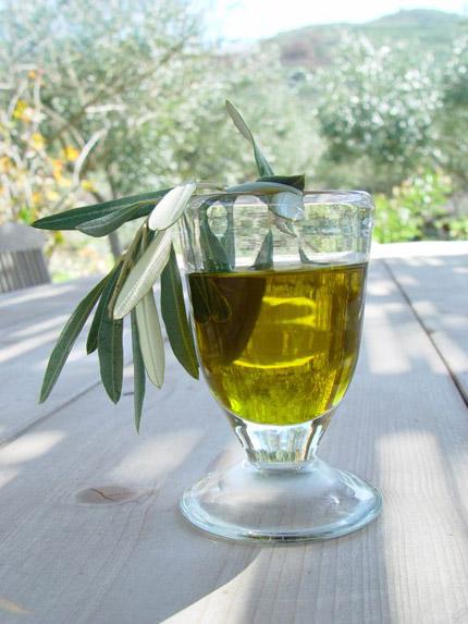 Olive-OIL_430