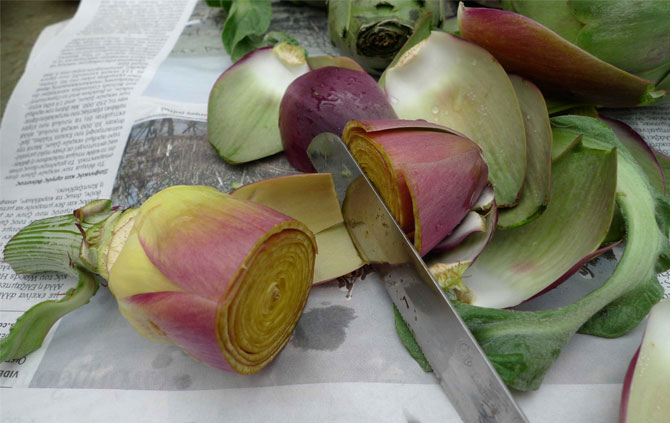 artichoke-preparing-011-small_0
