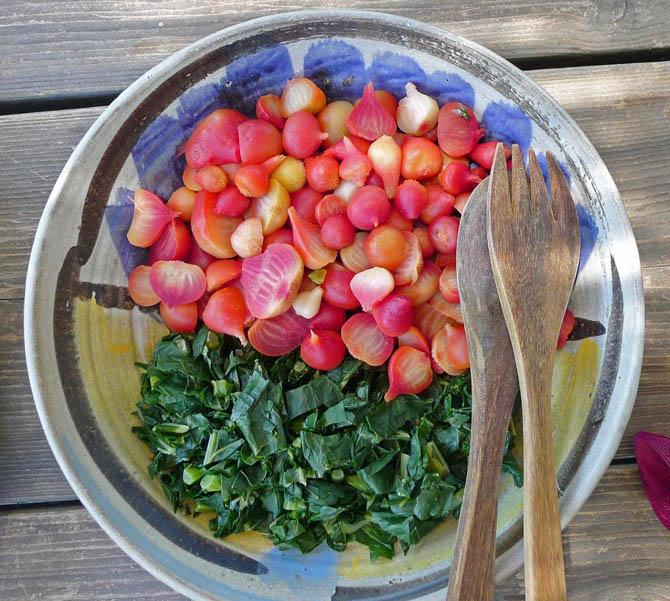 beets_greens_salad_small