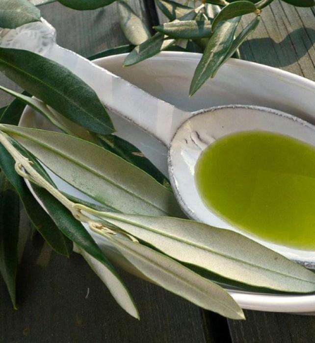 olive-oi-2011-spoon-table-1-bg