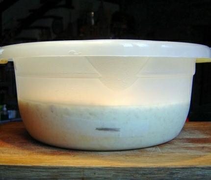 8a_Zym-bowl