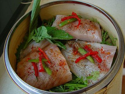 Fish-STEAM_430