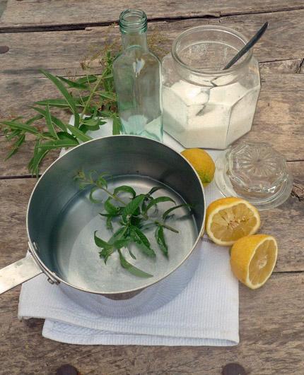 Lemon-Verbena-Syrup1_430