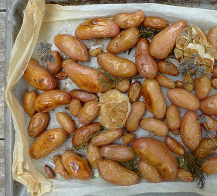 potatoes-paper-ROASTED_430