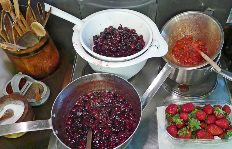 SUMMER-Pudding-fruits-Sw